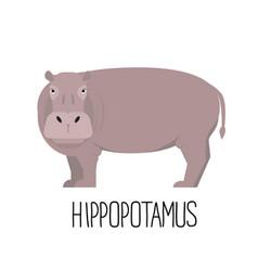 Cartoon cute hippopotamus flat vector