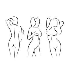 Women naked human beauty body drawing vector