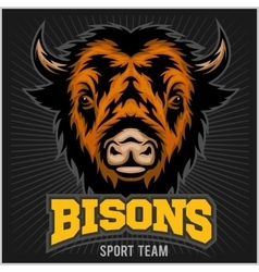 Buffalo head with horns Logo for any sport team vector image vector image