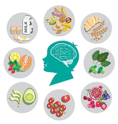 Best foods for brain health and energy vector