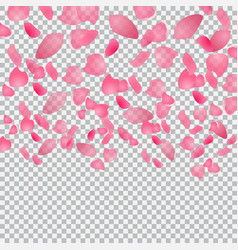 flying petals of flowers on checkered background vector image vector image
