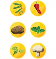 Icon veggies vector