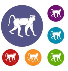 Monkey icons set vector