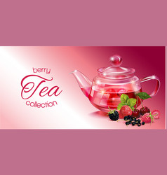 Berry tea banner vector