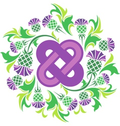 Celtic knot surrounded by flowers thistle vector