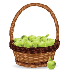 Basket of Green Apples2 vector image