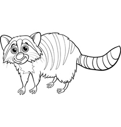 raccoon animal cartoon coloring book vector image vector image