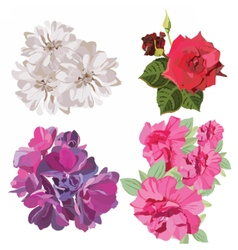 Spring summer flower set vector