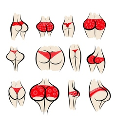 Collection of sexy female buttocks in panties vector image