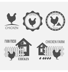 Chicken farm and eggs vector