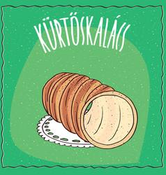 Hungarian spit cake known as kurtosh kalach vector