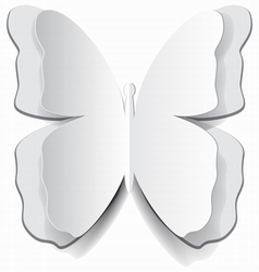 paper butterfly vector image vector image