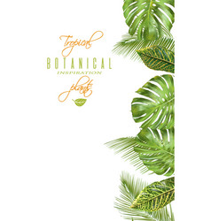 Tropical vertical banner vector