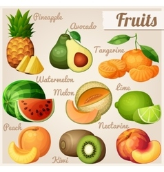 Set of food icons fruits pineapple ananas vector