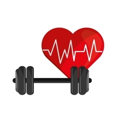 Heart cardiogram and dumbbell icon vector