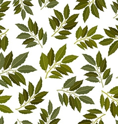 Seamless texture of bay leaf vector