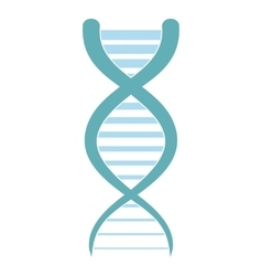 Dna and molecule icon vector