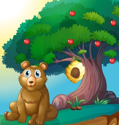 A bear in front of a big apple tree with a beehive vector image