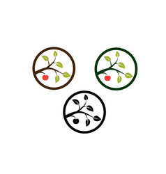 Apple tree branch vector