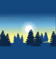 At morning spruce forest landscape vector
