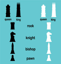 Hierarchy game chess vector image vector image