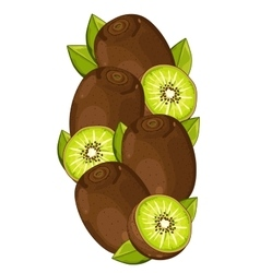 Kiwi isolated composition vector image vector image