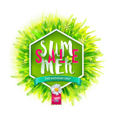 Summer sale on green backdrop vector