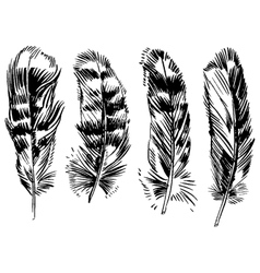 Hand-drawn feather ink handpicked vector