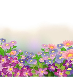 A garden of colorful flowers vector
