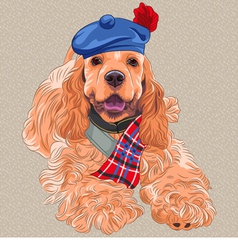 Dog american cocker spaniel in scottish ta vector