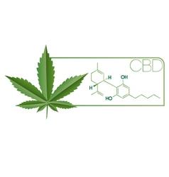 Cbd-plant leaf molecule vector