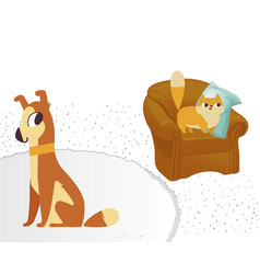 ginger color cat and dog characters flat cartoon vector image