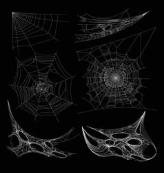 Spiderweb or spider web cobweb on wall corner vector
