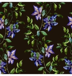 Clematis flower pattern vector image