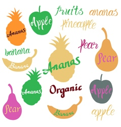 Fruit logo vector