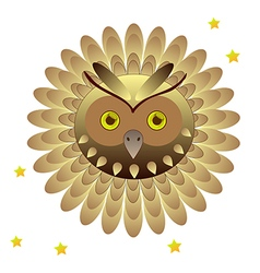 Owl head with feathers vector