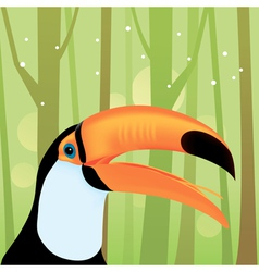 toucan bird at the jungle vector image vector image