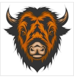 Buffalo head isolated on white vector