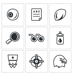 Set of human vision icons eye braille vector