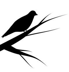 Bird sitting on a tree vector