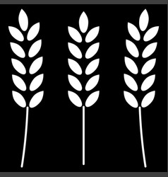 Wheat it is the white color icon vector