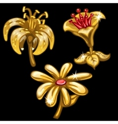 Three flowers of gold on black background vector image