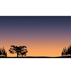 View of tree at sunrise vector