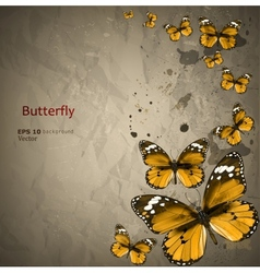 Colorful vintage background with butterfly Grunge vector image