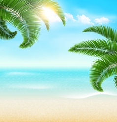 Beach with palm branches and clouds summer vector