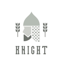 Knight head helmet with chain mail armor vector