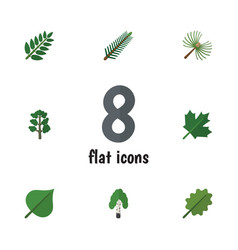 Flat icon bio set of alder oaken forest and vector
