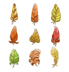 Hand drawn feather set in watercolors vector