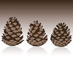 Set of pinecones in vector image
