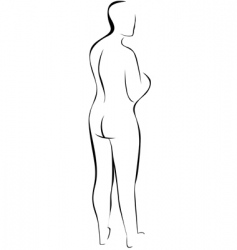 silhouette of nude woman vector image